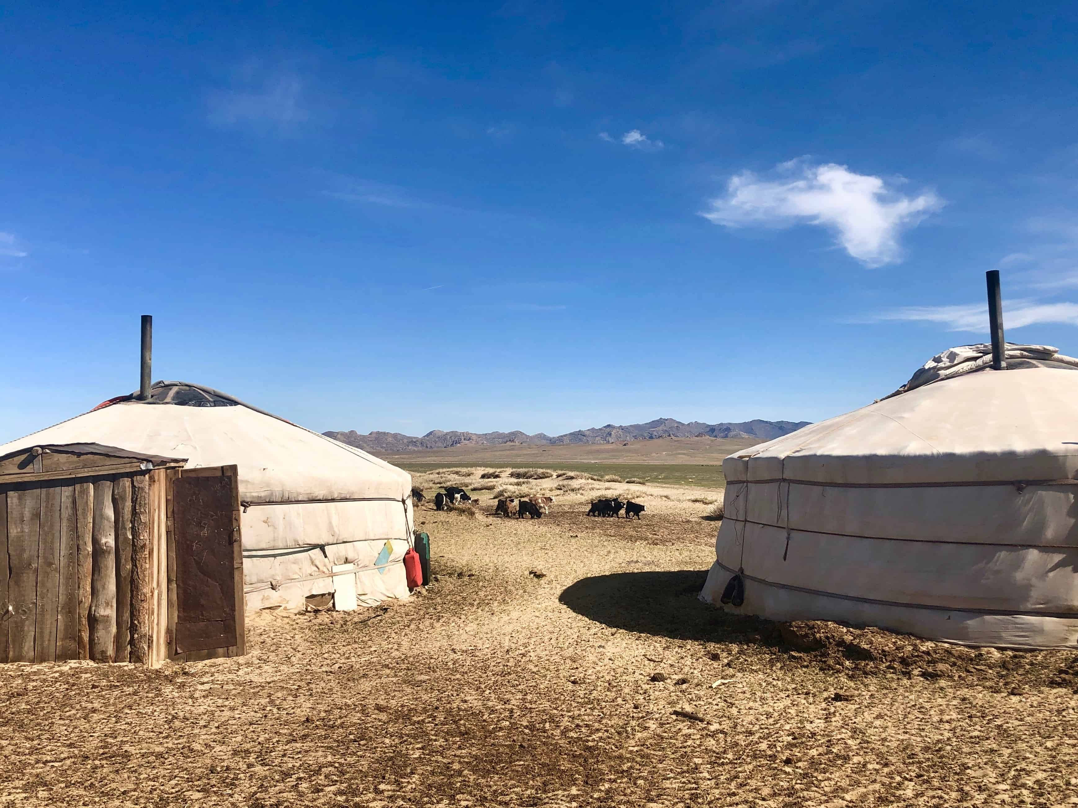 Life with a Nomadic Family in Mongolia